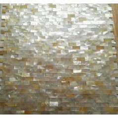 Golden Shell Tiles Kitchen Backsplash Tile Mother of Pearl Tiles Mosaic Deepwater Natural Seashell Mosaics MOP063