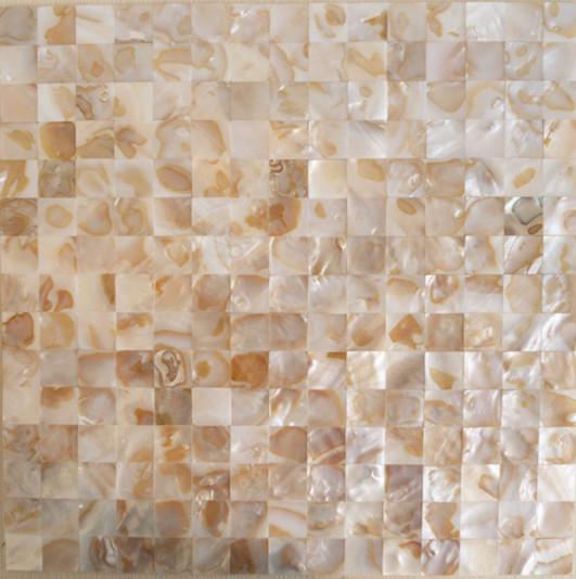 Mother Of Pearl Tile Shower Wall Backsplash Square