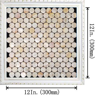 penny round mother of pearl kitchen backsplash tile - st007